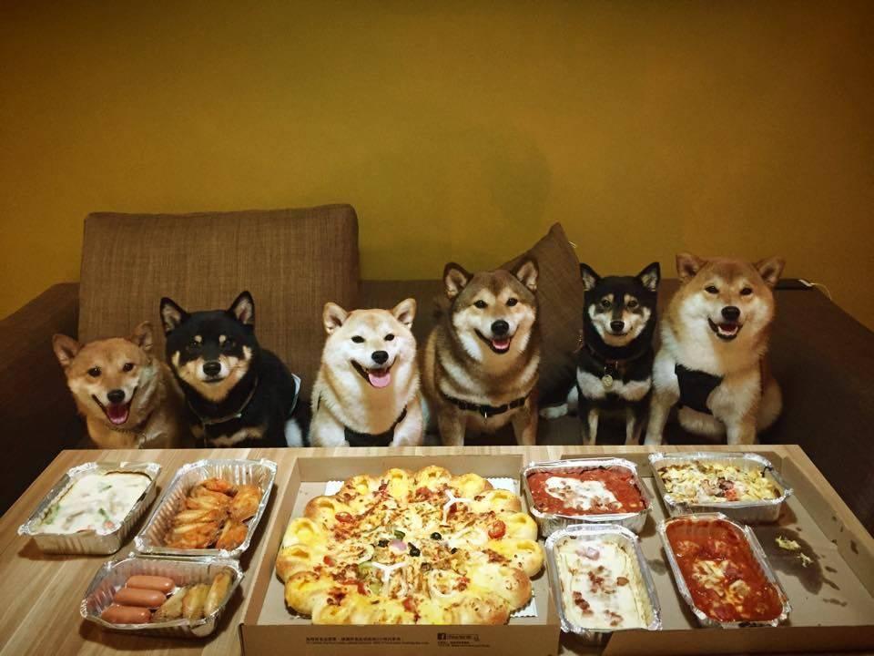 banquete perruno