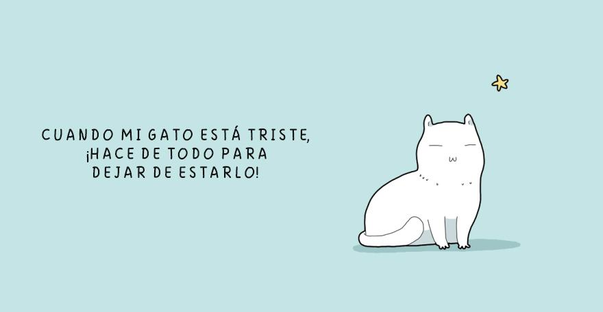 cuando un gato esta triste 12