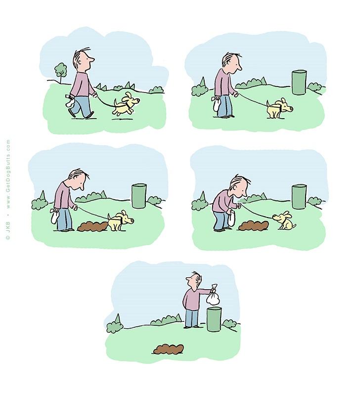 perrito cagon