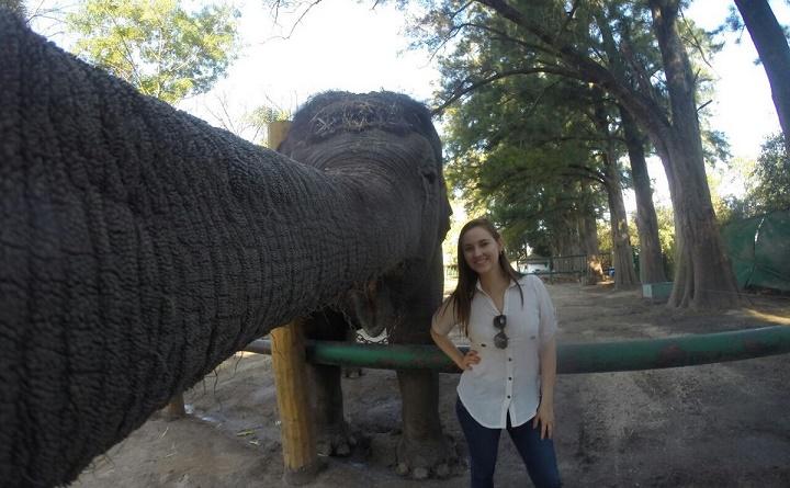 selfie con un elefante