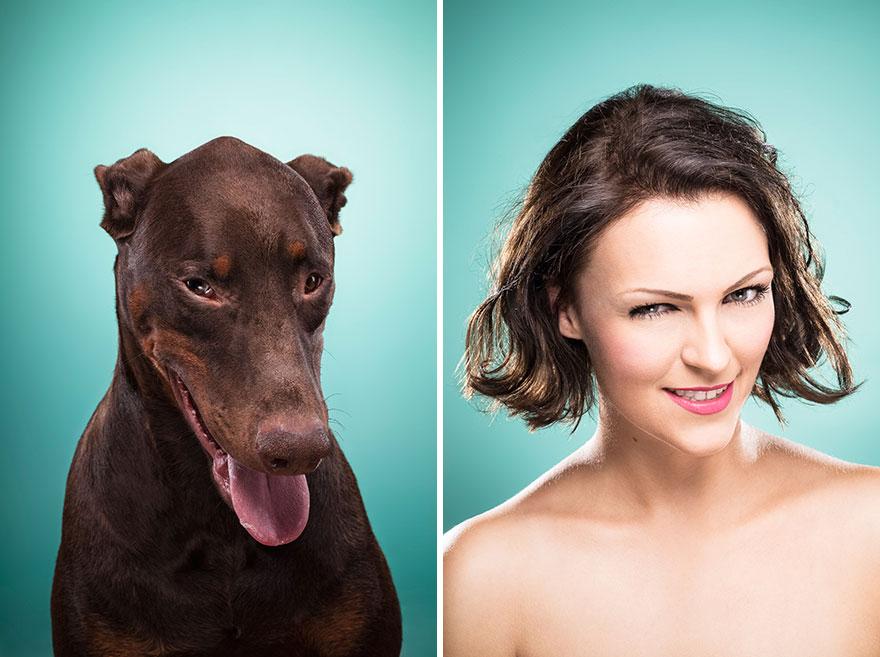 perros imitados 10