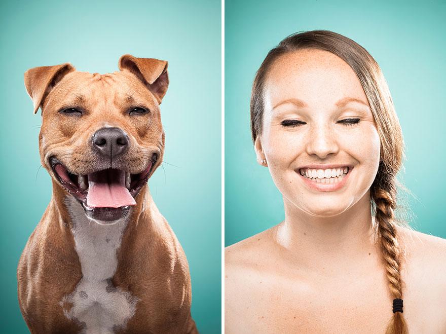 perros imitados 12