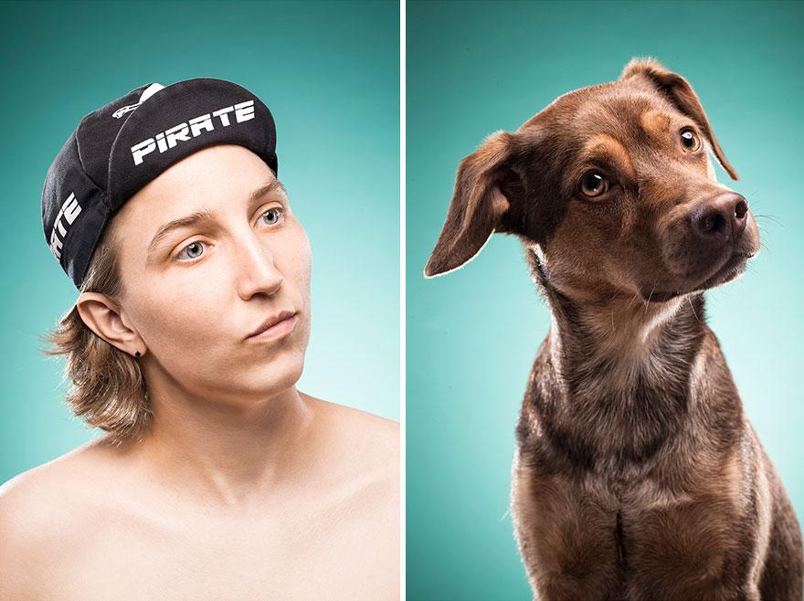perros imitados 13