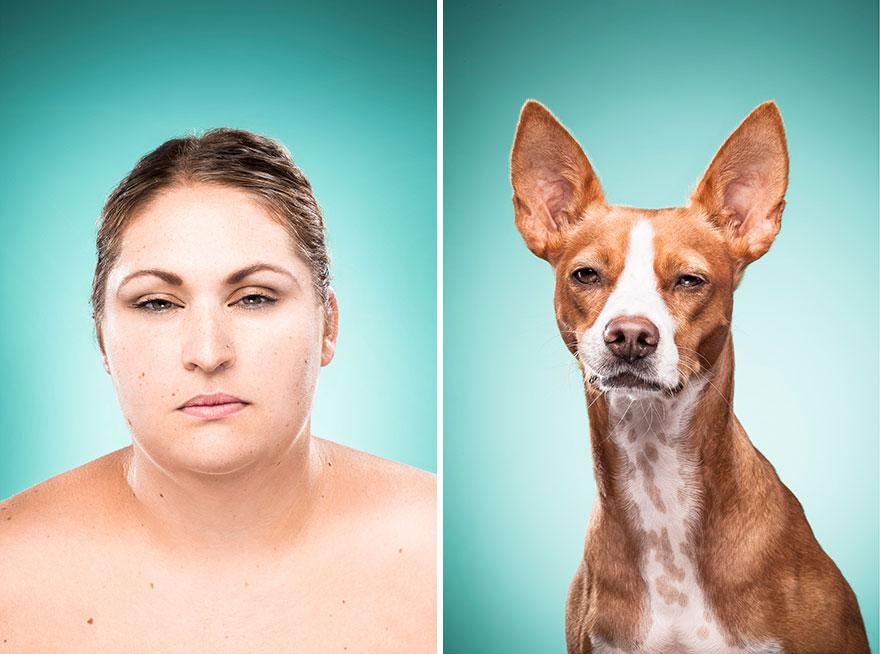 perros imitados 15