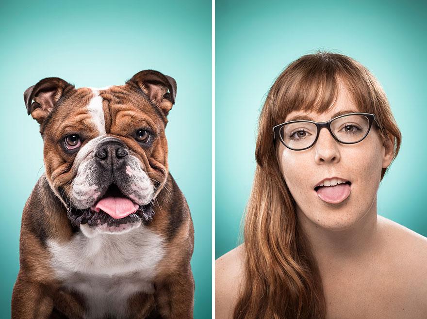 perros imitados 18