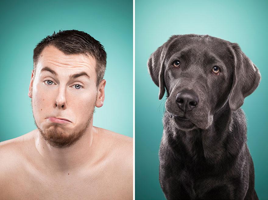perros imitados 21