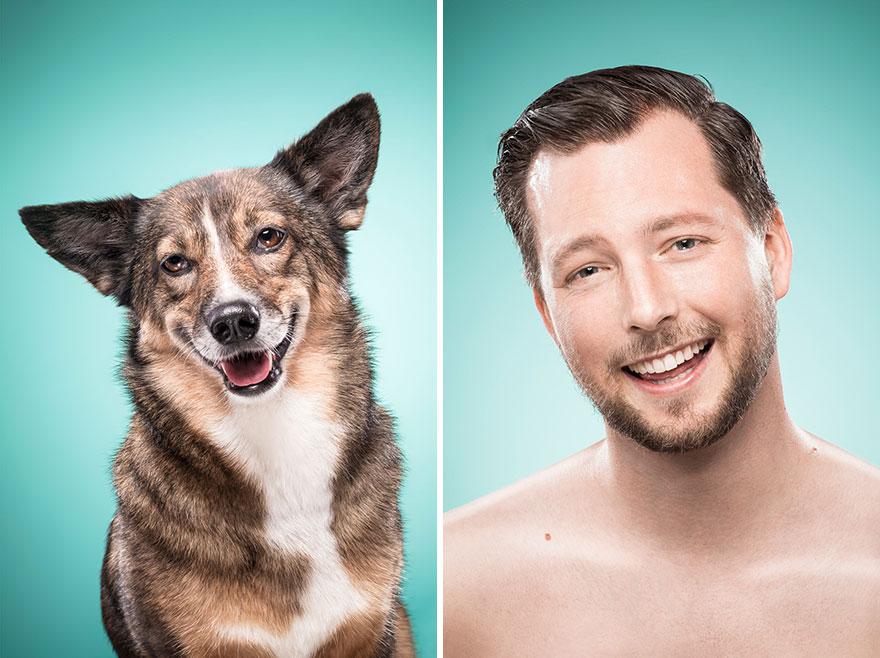 perros imitados 22