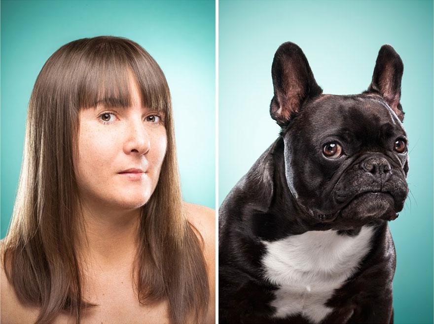 perros imitados 26