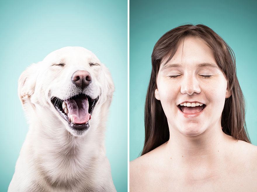 perros imitados 8