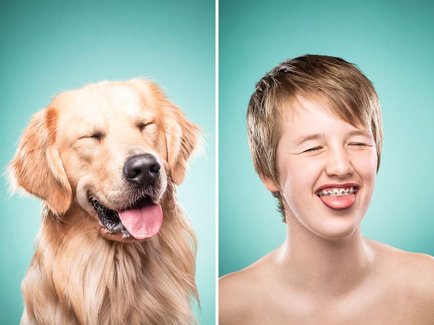 perros imitados