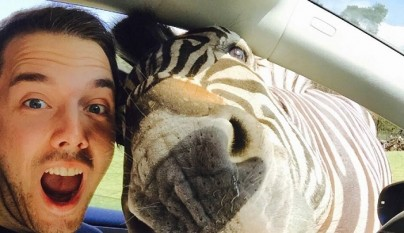 selfie con una cebra