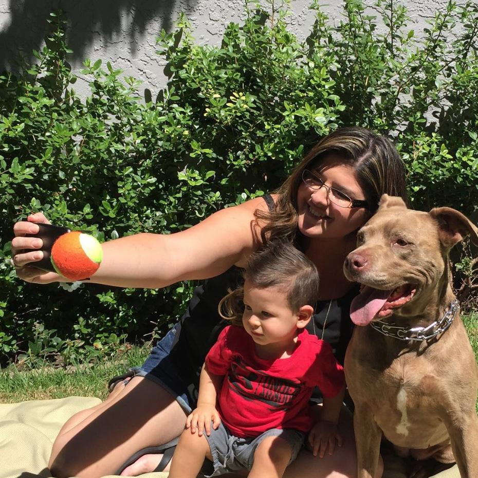 accesorio perro selfies 2