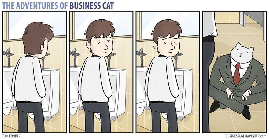 gato ejecutivo 1