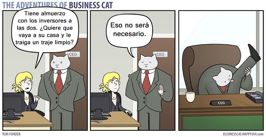 gato ejecutivo 10