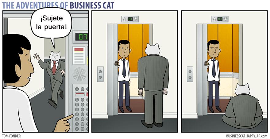 gato ejecutivo 11