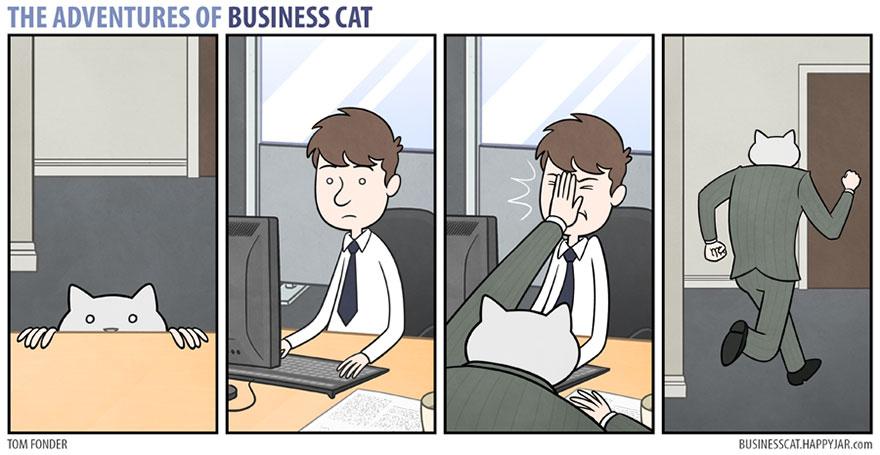gato ejecutivo 12