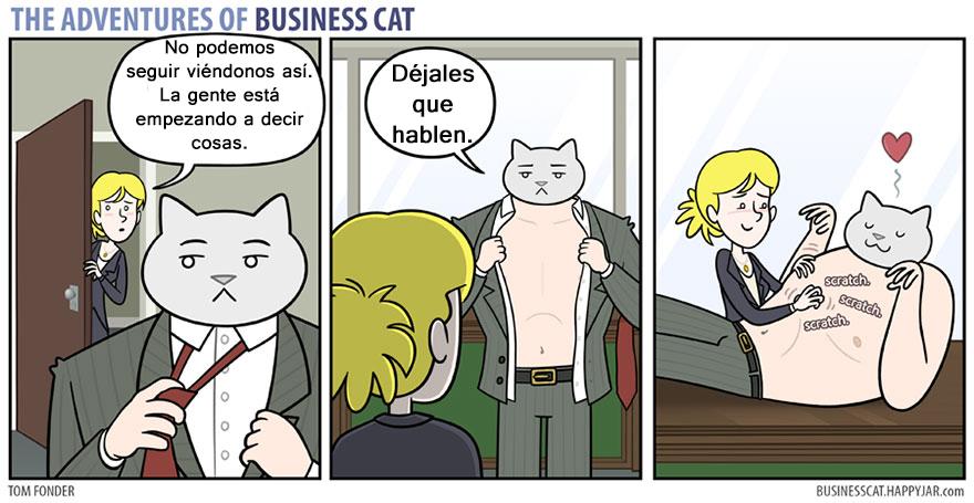 gato ejecutivo 13