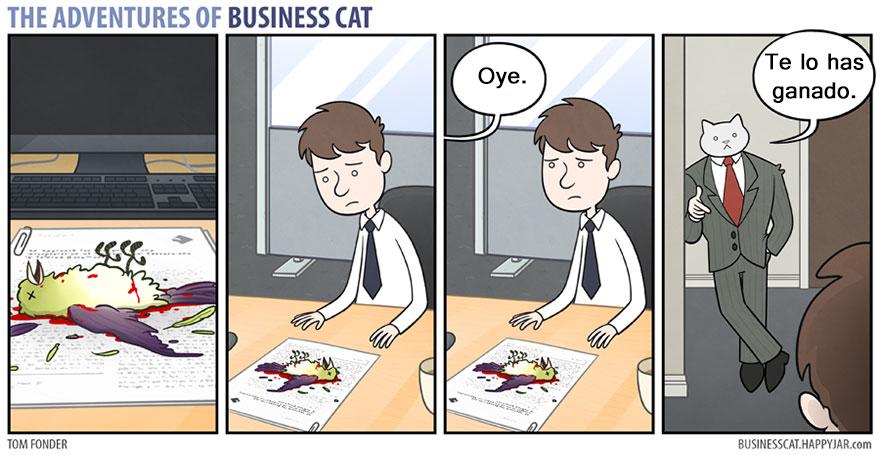 gato ejecutivo 3