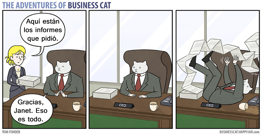 gato ejecutivo 5