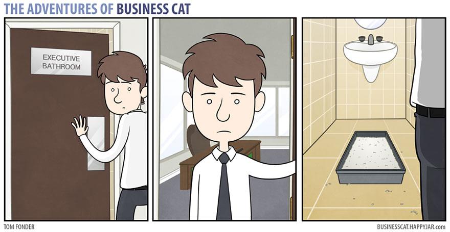 gato ejecutivo 6