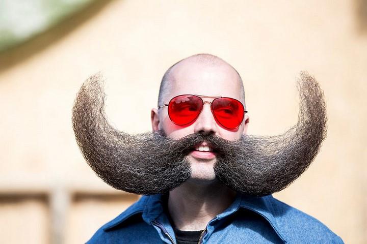campeonato barba 2