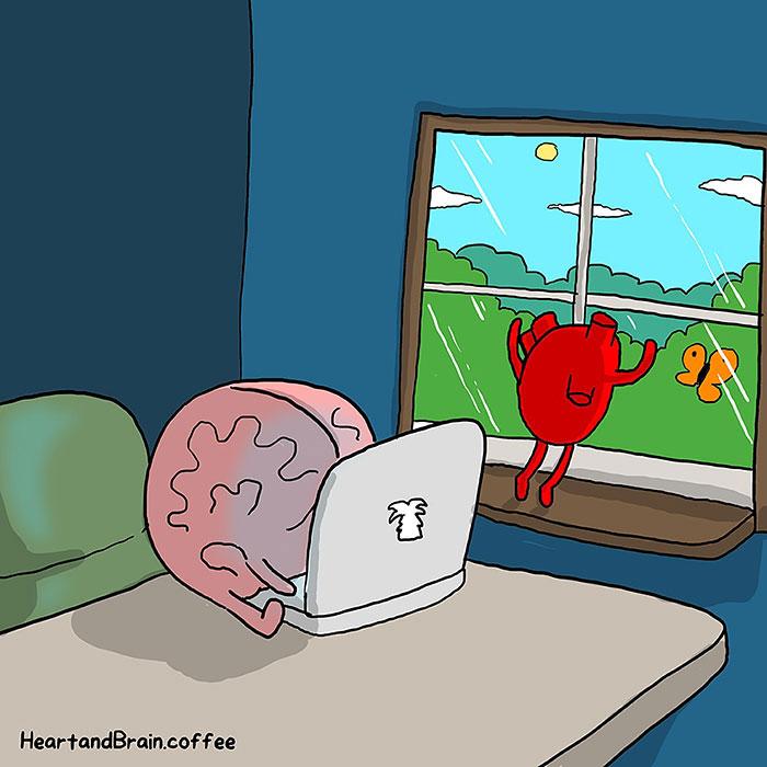 lucha corazon y cabeza 1