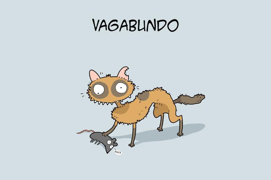 tipos de gatos 9