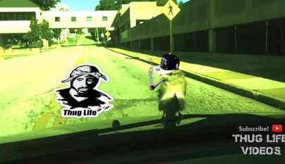 Thug Life animales