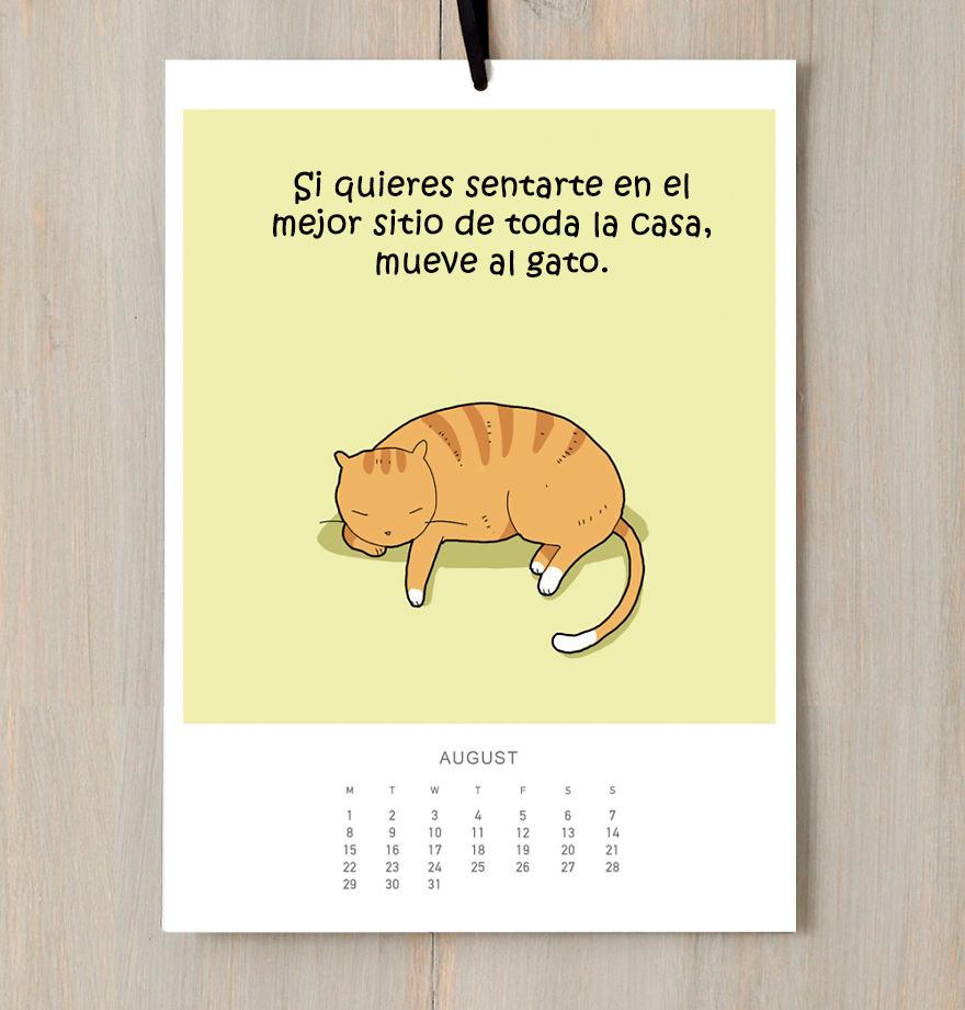 calendario gatuno 8