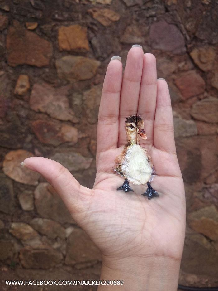 dibujos 3D en la palma de la mano 8