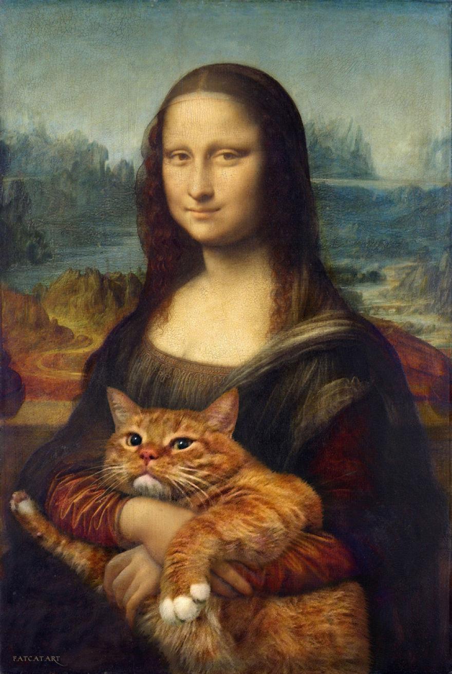 gatos humor 1