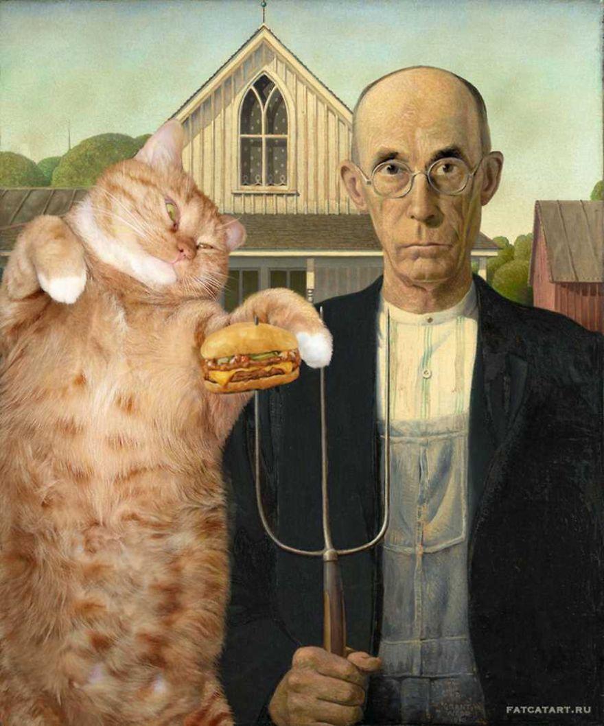 gatos humor 4