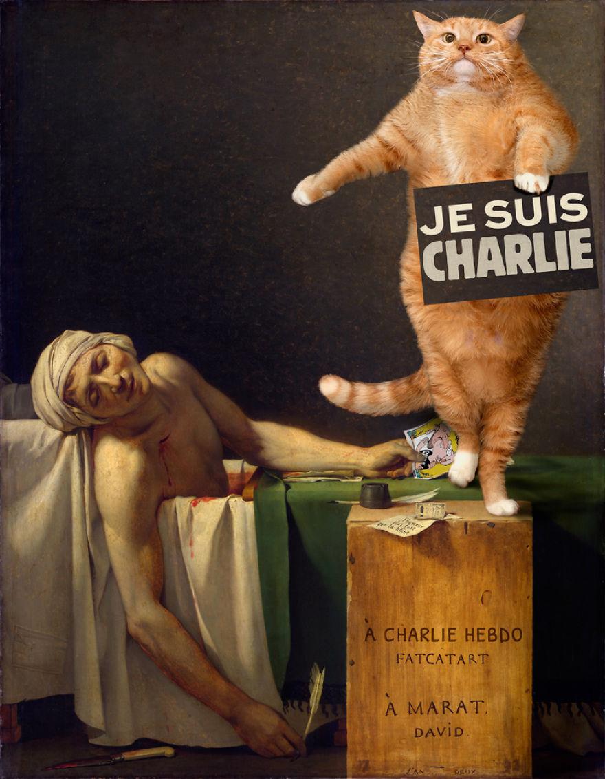 gatos humor 6