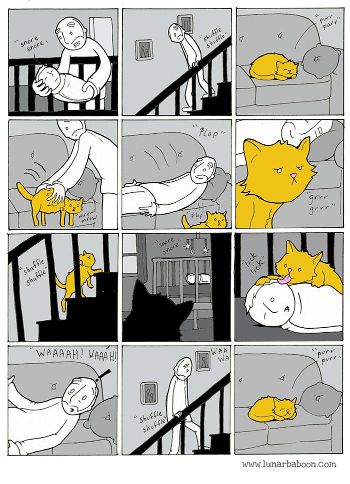 la vida con un gato 3