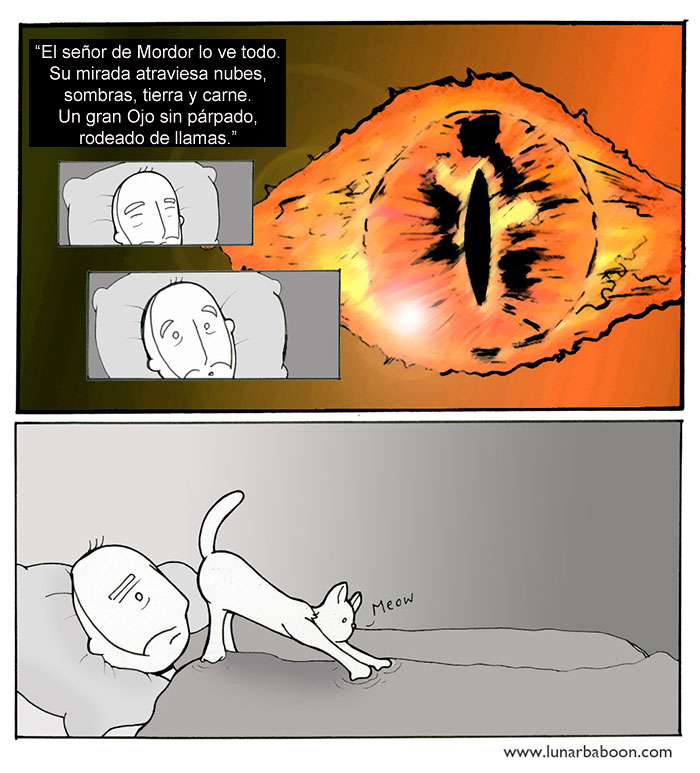 la vida con un gato 4