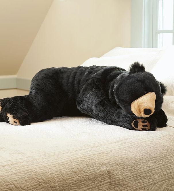 oso dormir 2