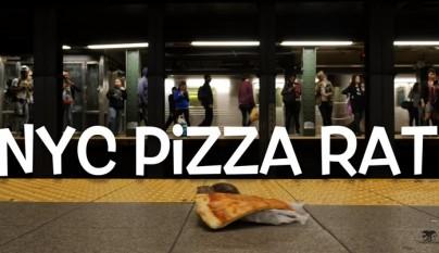 rata pizza