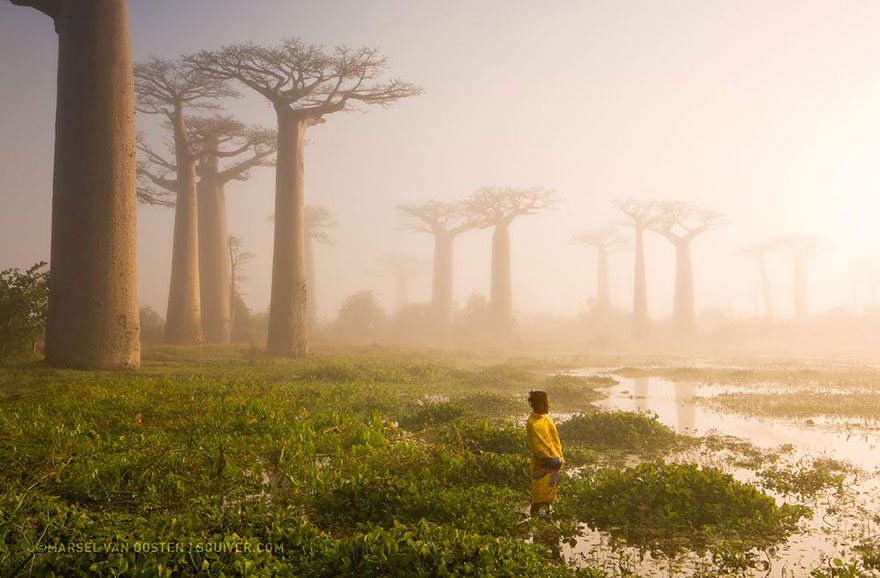 mejores fotos National Geographic 2015 8