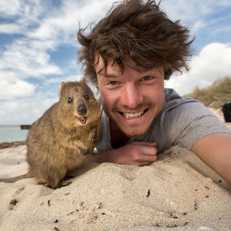 selfies con animales 1