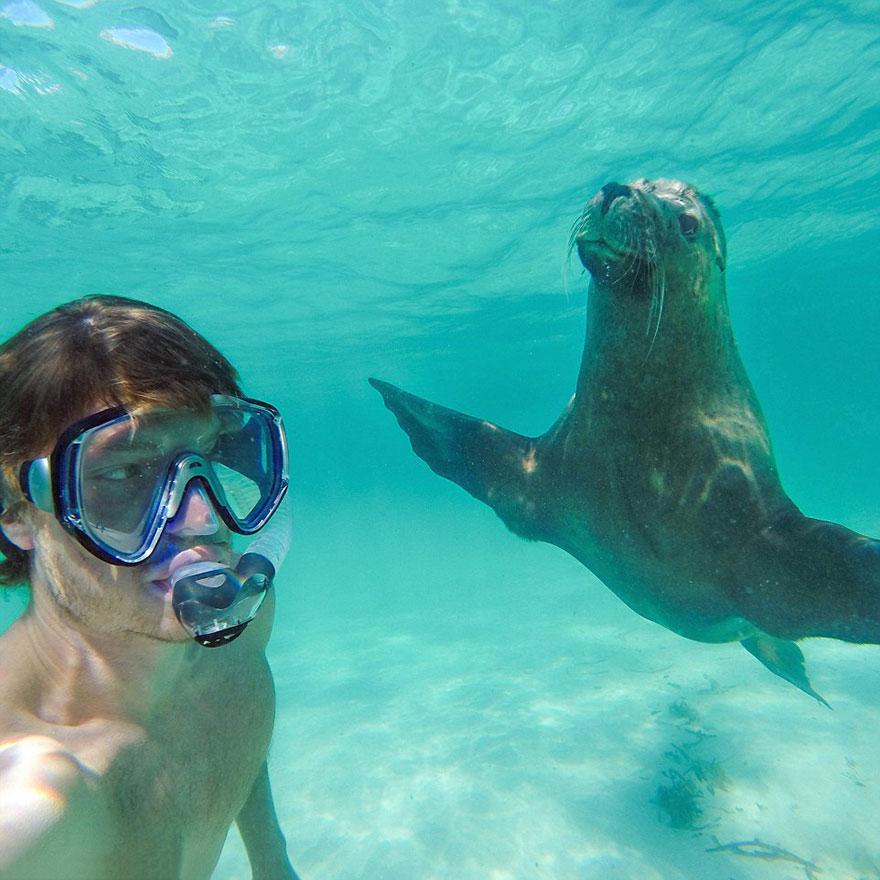 selfies con animales 10