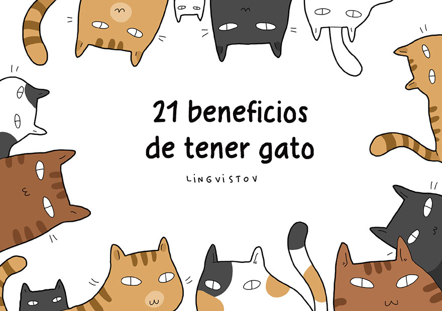 21 beneficios de tener gato