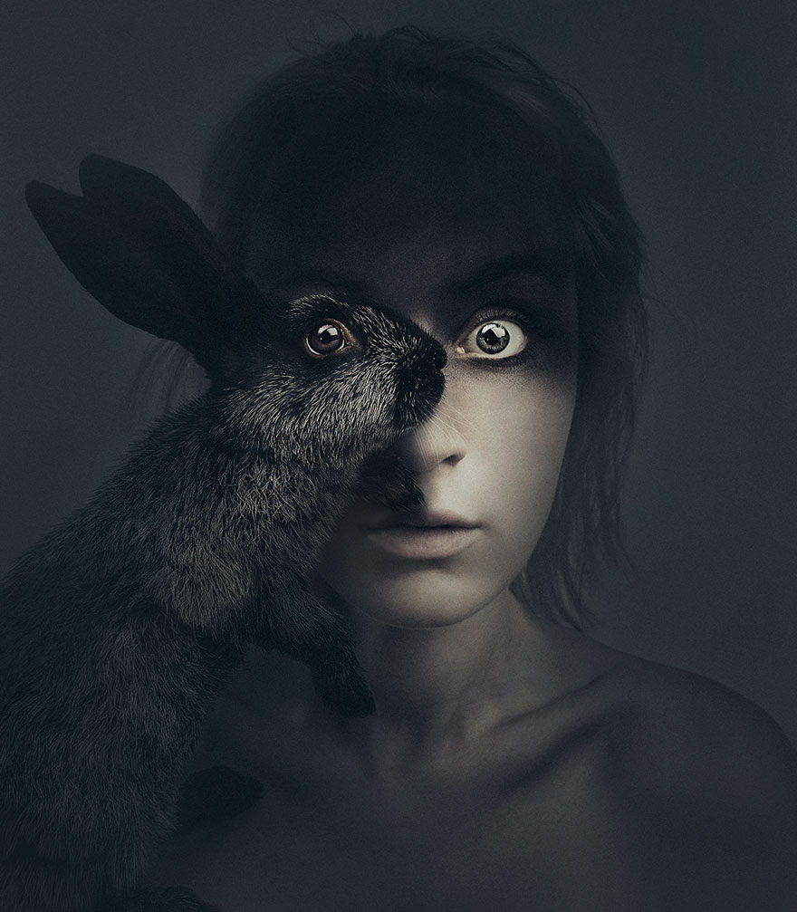 ojos animales 3