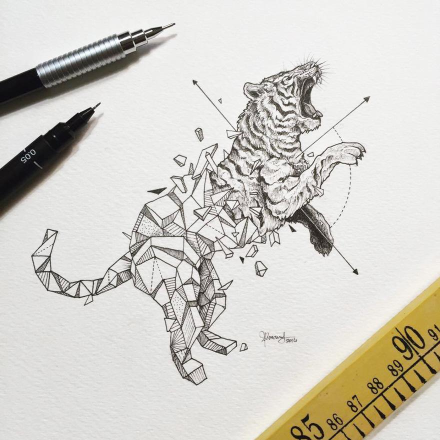 Dibujos de animales fusionados con formas geomtricas dibujos animales formas geometricas 12 fandeluxe Gallery