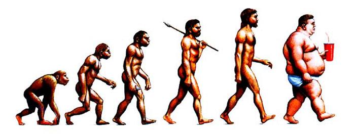 dibujos evolucion 16