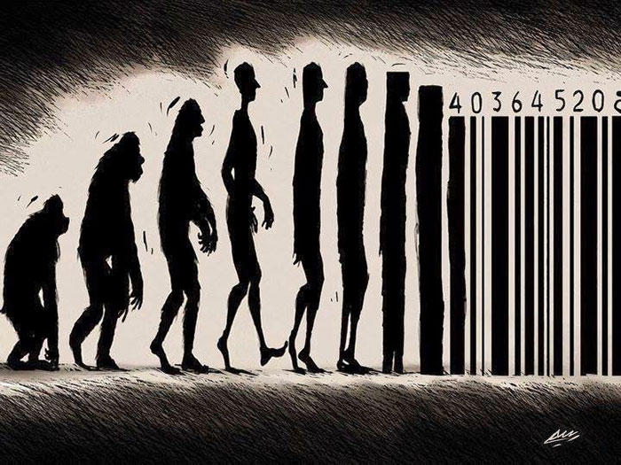 dibujos evolucion 6