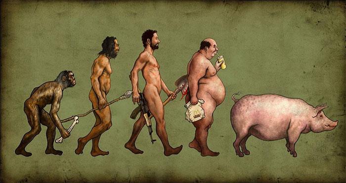 dibujos evolucion 8