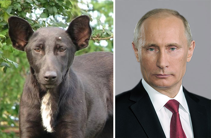 el doble de Putin