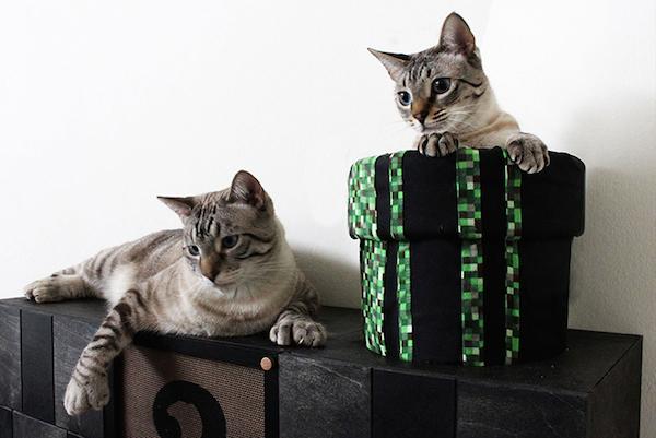 gatos super mario 2