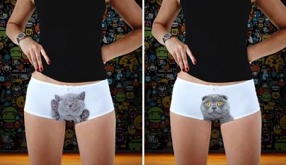 pantis de gatitos 1