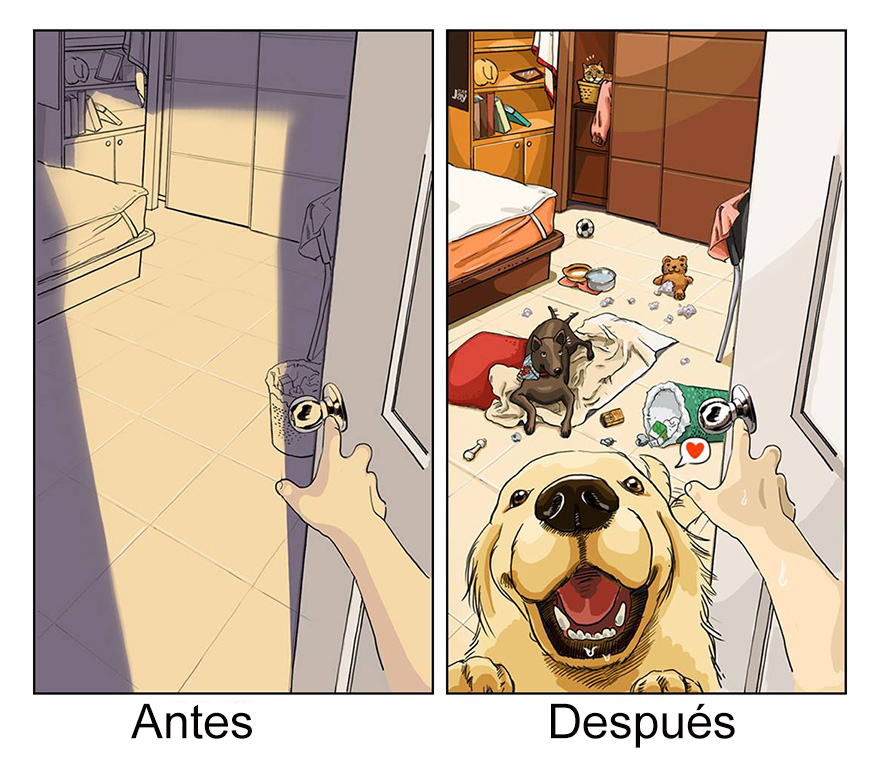 vida antes y despues tener perro 1